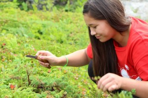 Kalolin Johnson picking traditional medicines during the Medicine Walk at Peggy's Cove.